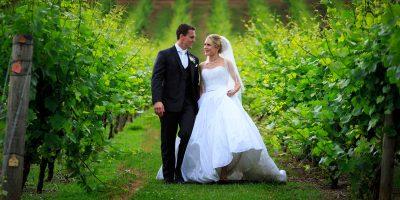 Forest Edge Winery | Studio Edge Photography Video
