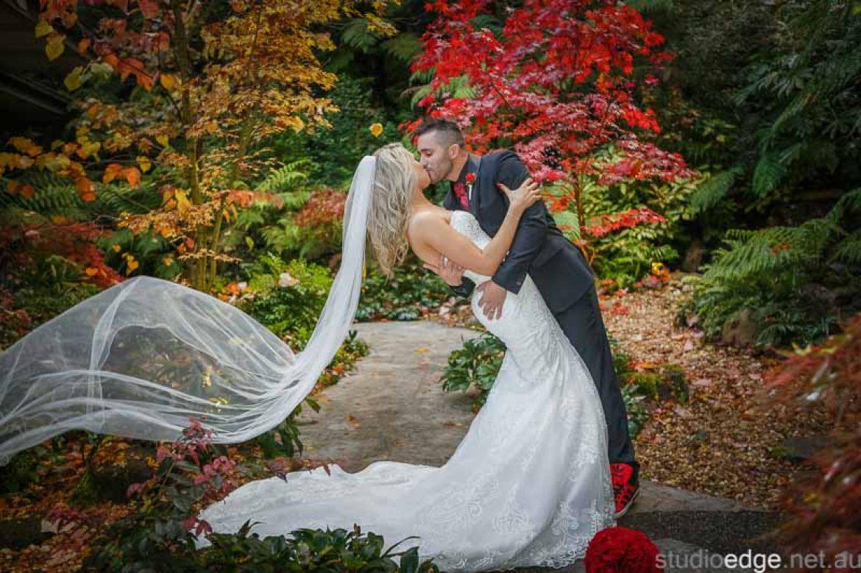 Lyrebird Falls | Brooke Jonathan