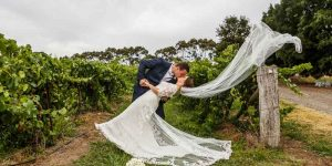 St Anne's Winery | stephanie jake